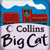 icon for Collins Big Cat: The Steam Train Story Creator